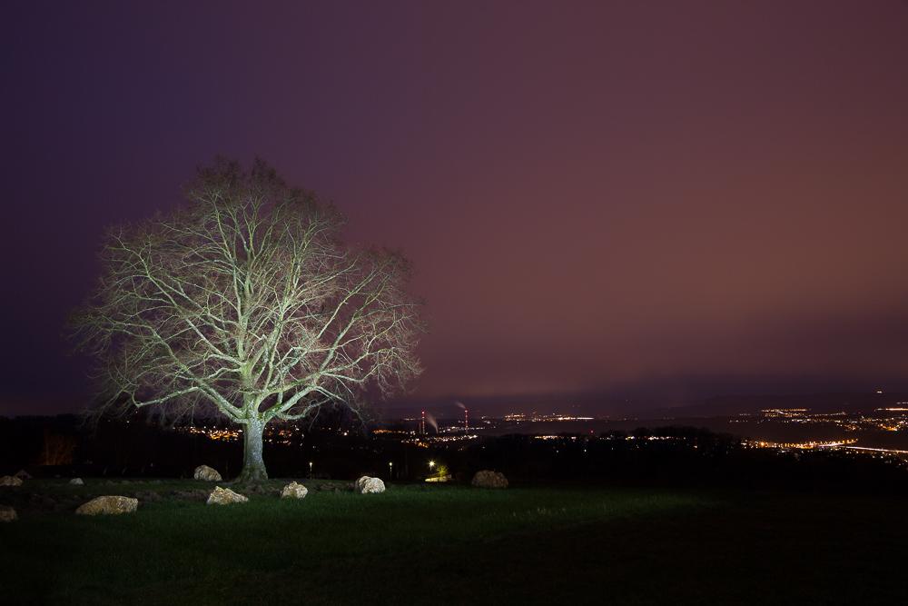 Nachtaufnahmen auf der Esslinger Katharinenlinde